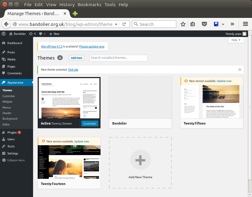 Screenshot of theme-selection page with Twenty Sixteen theme active