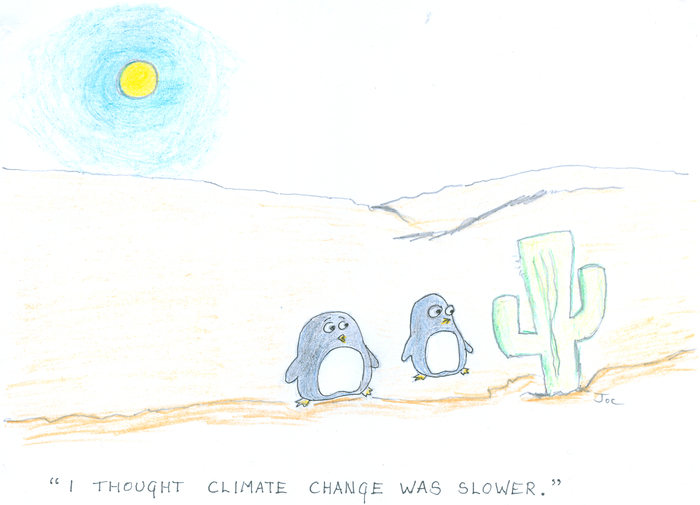 Two penguins stand staring at a cactus in the