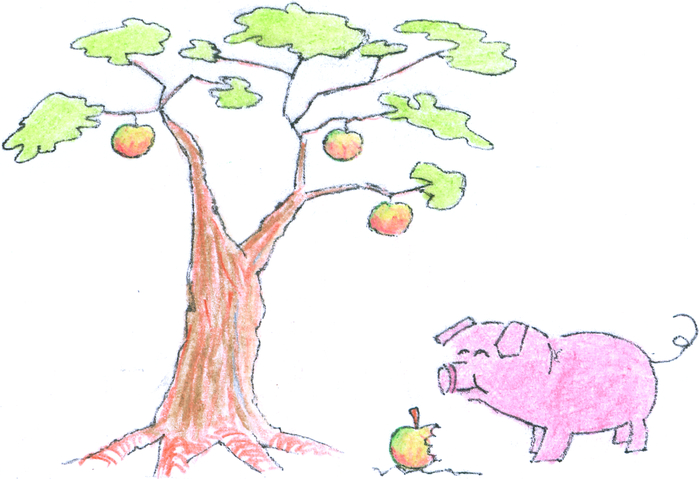 """A pig stands under an apple tree, happily munching apples."""""""