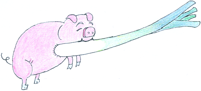 A pig stands holding a leek in its mouth.